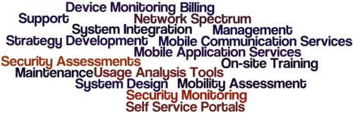 Self Service Portals, Device Monitoring, Mobility Assessment, Strategy Development, On-site Training, Billing Usage and Analysis Tools, System Design, Mobile Application Services, System Integration, Support and Maintenance, Network Spectrum and Security Assessments, Mobile Communication Services, Security Monitoring Management
